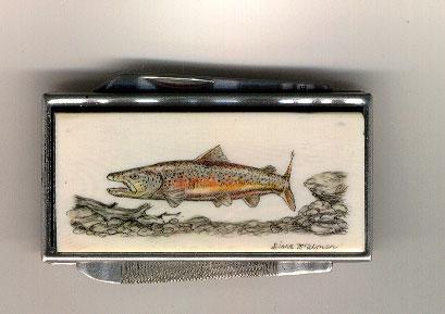colored-trout-copy